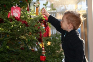 fascinated with the tree up until it came down on January 1st
