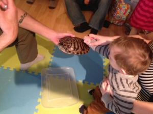 Touching one of those red eared sliders I was talking about.