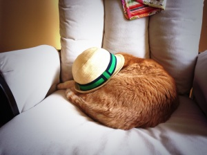 Henry put this hat on Atticus' head. The hat remained on for a good two hours. No point in wasting a good nap just to get something off your head.